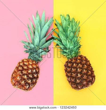 Two Pineapple Lying On Colorful Background, Ananas Concept
