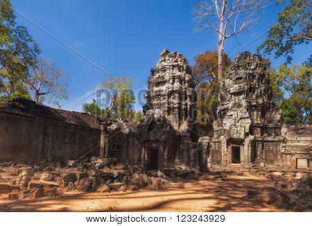 SIEM REAP, CAMBODIA. December 16, 2011.Ta Prohm Temple at Angkor Wat.