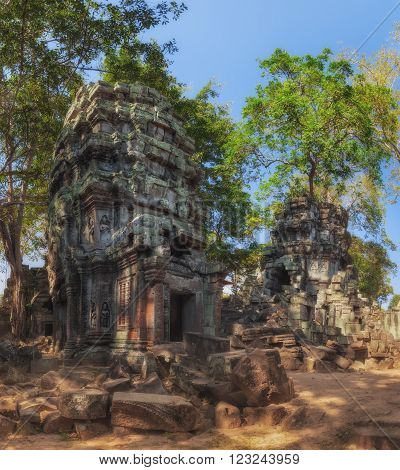 SIEM REAP, CAMBODIA. December 16, 2011.Ta Prohm, ancient temples in the jungle.