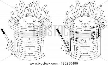 Rabbit In Hat Maze