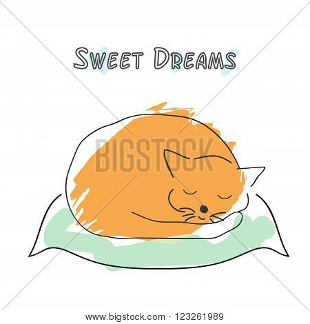 Cute sleeping cat vector illustration. Cat on the pillow with text above