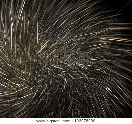 Abstract black background with hedgehog needles or spiral star paths, fractal