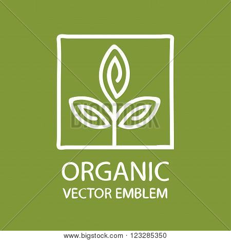 Vector abstract emblem, outline monogram, flower symbol, concept for organic shop or yoga studio, logo design template, linear logo design template, organic food and farming, green, vegan food concept