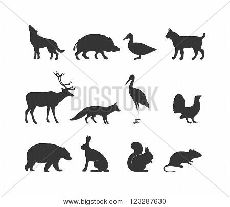 Wild animals black silhouette and wild animal symbols. Predators silhouette. Wild life animal  black silhouette. Black wild animals silhouette wild animal zoo vector.