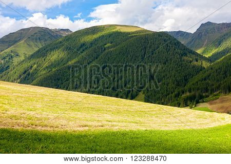 Mountains and meadows at Santa Maddalena Valley in the Dolomites Italy