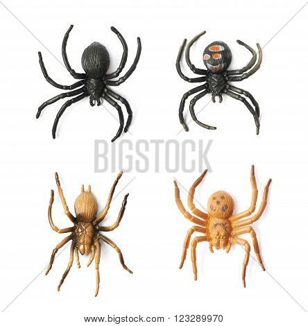Fake rubber spider toy isolated over the white background, set of four different foreshortenings