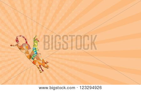 Business card showing Low polygon style illustration of a rodeo cowboy riding bucking bull viewed from the side set on isolated white background.