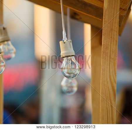 incandescent light bulbs hanging on wires and trees