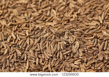 Surface covered with cumin seeds as a backdrop composition