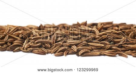 Line of cumin seeds isolated over the white background