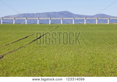 Elevated concrete irrigation canal over cereal fields at Guadiana River Meadows Badajoz Spain