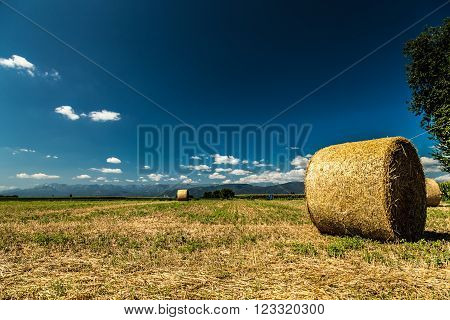 Hay Bale In The Fields Of Italy