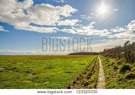 Green fields along coastline near Grange-over-sands in Cumbria, England on sunny day.