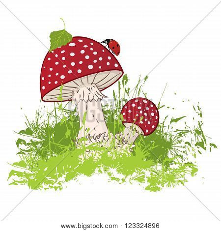 vector illustration of the mushroom and ladybird