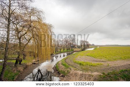 Colorful landscape on a cloudy day at the end of the winter season. In the foreground is a weeping willow which is reflected in the mirror-smooth surface of the stream.
