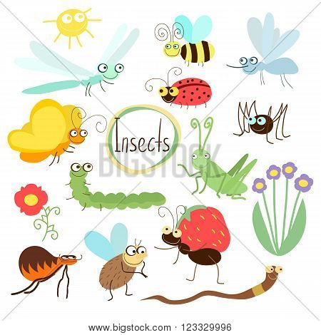 Insects vector, isolated on white background. Butterfly, mosquito, spider, ladybug and other insects.