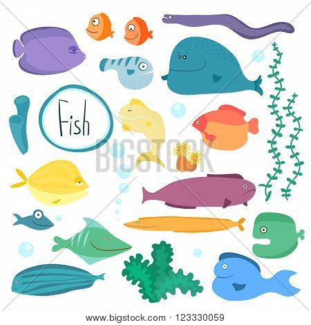 Tropical fish isolated on white background, vector collection.