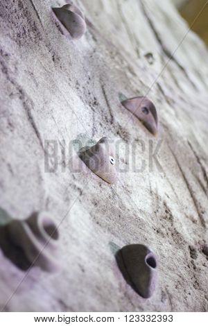 Indoor Climbing Wall Rock Holds