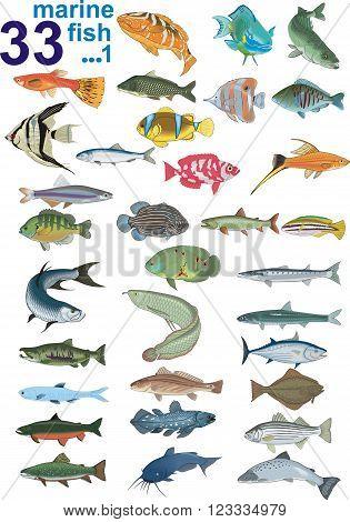 Set - Marine Fishes, Part 1 [