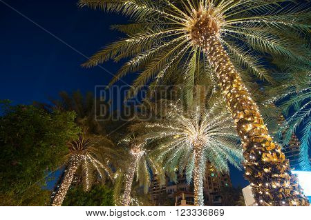 christmas decoration background palm tree outdoor in summer night