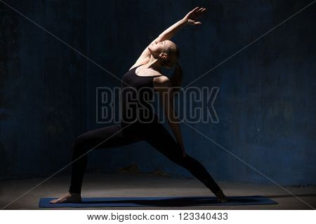 Beautiful Yoga Woman Doing Peaceful Warrior Pose