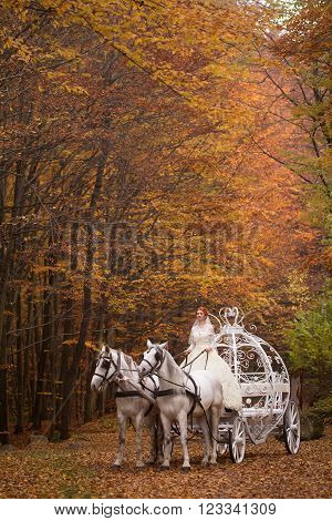 Young wedding romantic couple of bride in white dress and bridegroom in suit in cinderella carriage with horses in autumn deep orange forest outdoor on natural background vertical picture