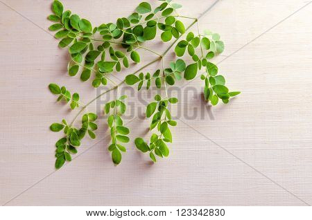 Moringa Leaves On Wooden Board Background