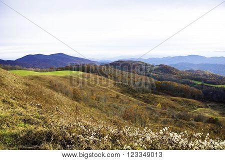 Fall at North Carolina in the Blue Ridge Mountains.