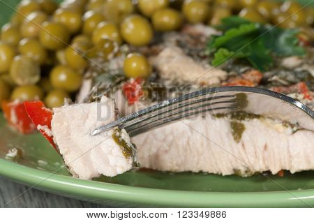 Turkey meat in vegetable sauce with paprika and greenery ** Note: Shallow depth of field
