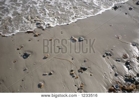 Beach_Wavelet