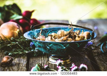 Shallots on wood. Vegetables in rustic setting