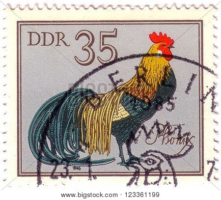 GDR - CIRCA 1979: A stamp printed in GDR shows Phoenix Cock, series German Cock, circa 1979.