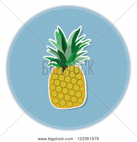 ananas colorful cartoon flat vector icon illustration