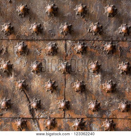 Ancient Wooden Spiked Door Detail I