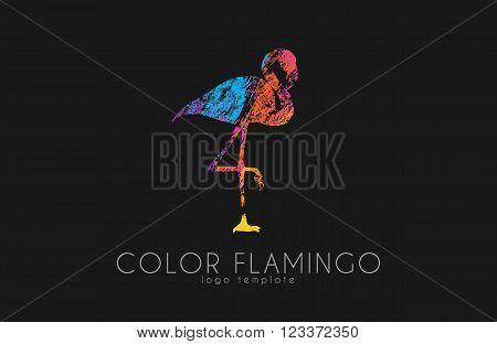 Flamingo logo. Color flamingo. Beautiful bird logo. Creative logo.