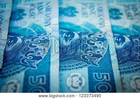 Polish money, fifty Polish zloty, blue banknotes