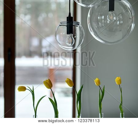 Five yellow tulips in glass vases and glass round lamps over them. They are on the soft background of a brown window and a light wall. Close-up photo.