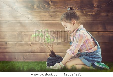 Cute little child girl cares for plants. Child holding seedling tree. Concept of spring, nature and care.