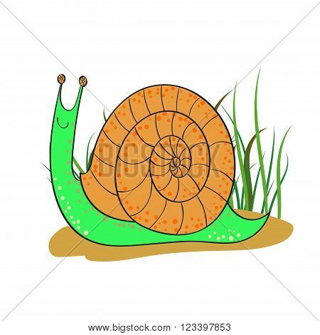 Cute cartoon snail isolated on white background. Hand drawn vector illustration.