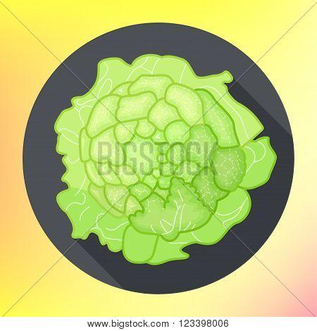Organic cauliflower flat design style icon. Savoy cabbage vegetable top view pictogram. Vegetarian food  ingredient.
