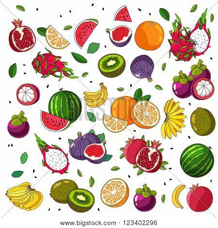 Fruit mix. Set fruit icons. Vector illustration on white background. Fruit pattern. Assorted fruits.