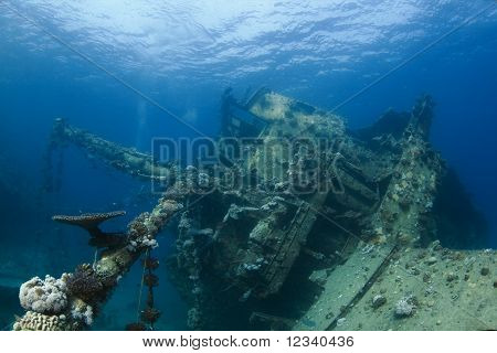 Ship Wreck In Egypt
