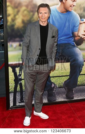 NEW YORK-JUN 24: Liam Neeson attends the 'Ted 2' world premiere at the Ziegfeld Theatre on June 24, 2015 in New York City.