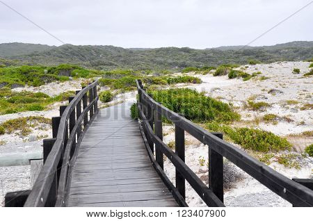 Wooden Boardwalk on the limestone cliffs in Hamelin Bay, Western Australia with a vegetated dune landscape under dark stormy skies.