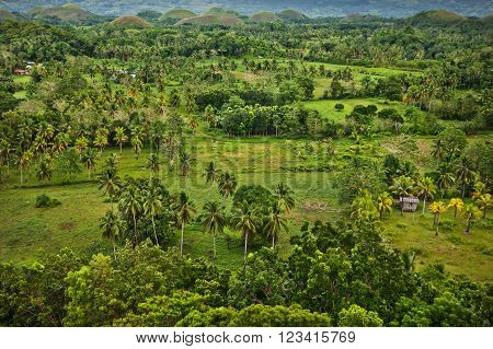 Panoramic view of the Chocolate Hills Bohol Island Philippines