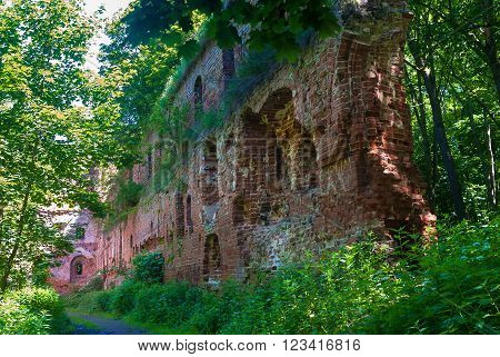 Ruined brick wall of old castle Balga in Prussia, Kaliningrad region, Russia