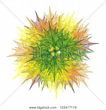 Bright Vector Flower Head
