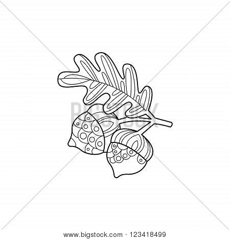 Acorns And Leaf Hand Drawn Vector Design Zentangle Print For Coloring Book