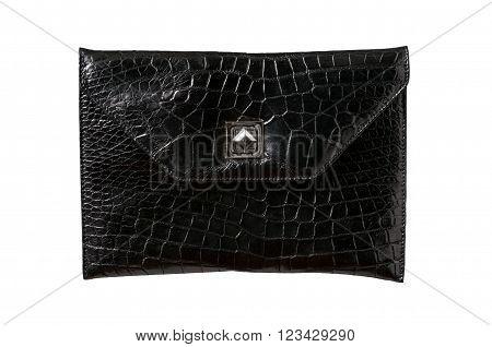 Exotic element alligator leather hand bag, skin in back color
