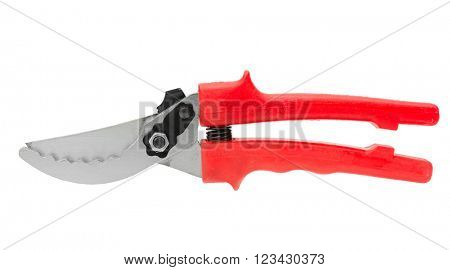 pruner isolated on white background